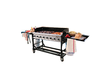 Sams Gas Grill Model ST1017-012939